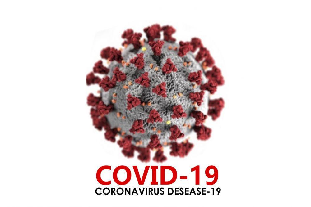 Jumlah Pasien Sembuh COVID-19 Kembali Naik