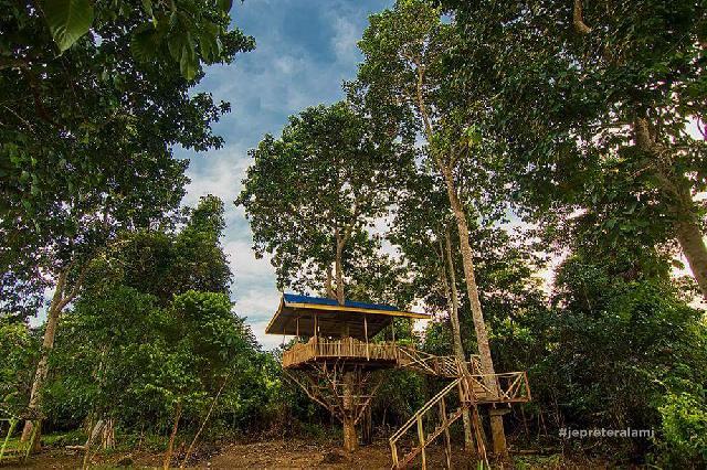 Main-mainlah di ''Rumah Pohon'' Pantai Marina - Teluk Makmur... Siapa tau terhibur....